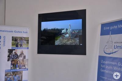 2. Bildschirm Kamera Störche